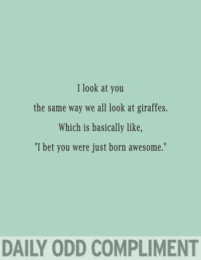 giraffes happen to be my favorite animal