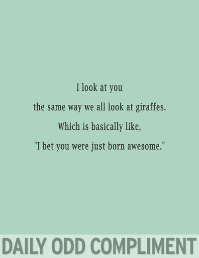 giraffes happen to be my favorite animal